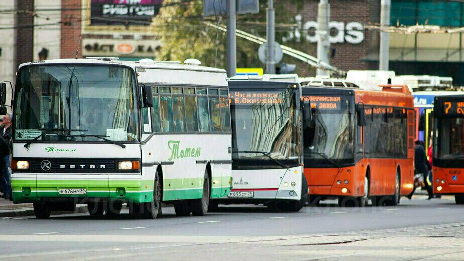 Дятлова назвала сроки, когда во всех калининградских автобусах будут работать кондиционеры - Новости Калининграда   Фото Александра Подгорчука