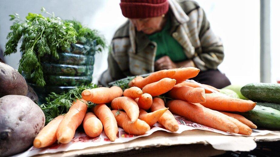 Алиханов заявил о снижении цен на морковь - Новости Калининграда | Фото: архив «Клопс»
