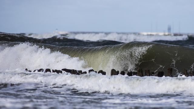 «Иногда тонущего спасти невозможно»: эксперты рассказали о причинах трагедий в Балтийском море