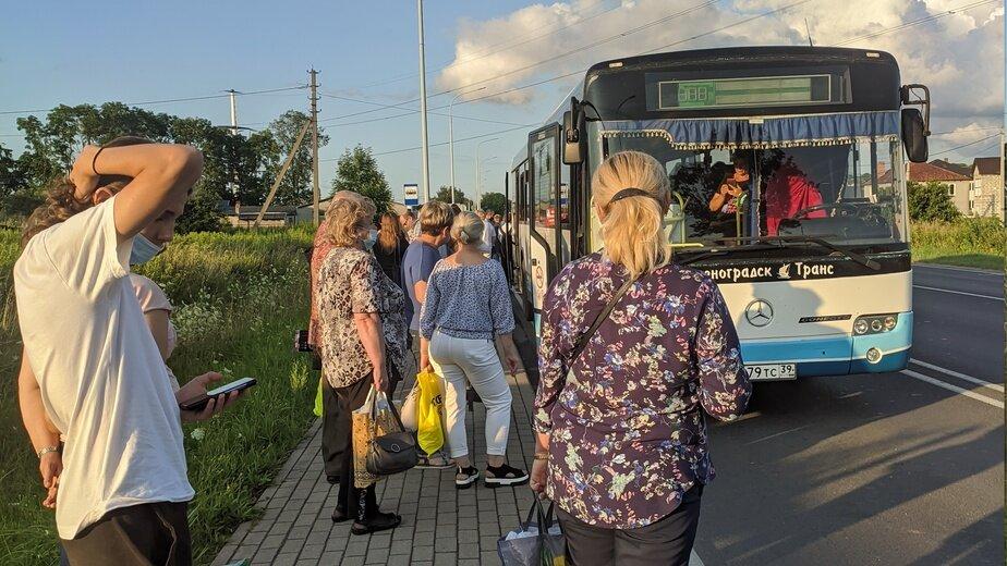 «Ездим битком и без кондиционеров»: пассажиры — о сокращении автобусов из Калининграда в Мамоново - Новости Калининграда | Фото очевидцев