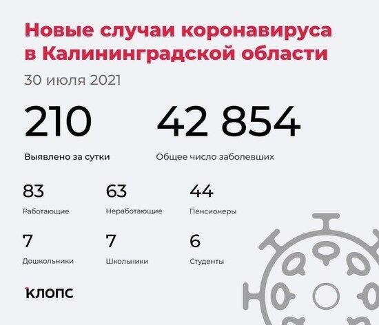 В оперштабе Калининградской области рассказали подробности о ситуации с ковидом - Новости Калининграда