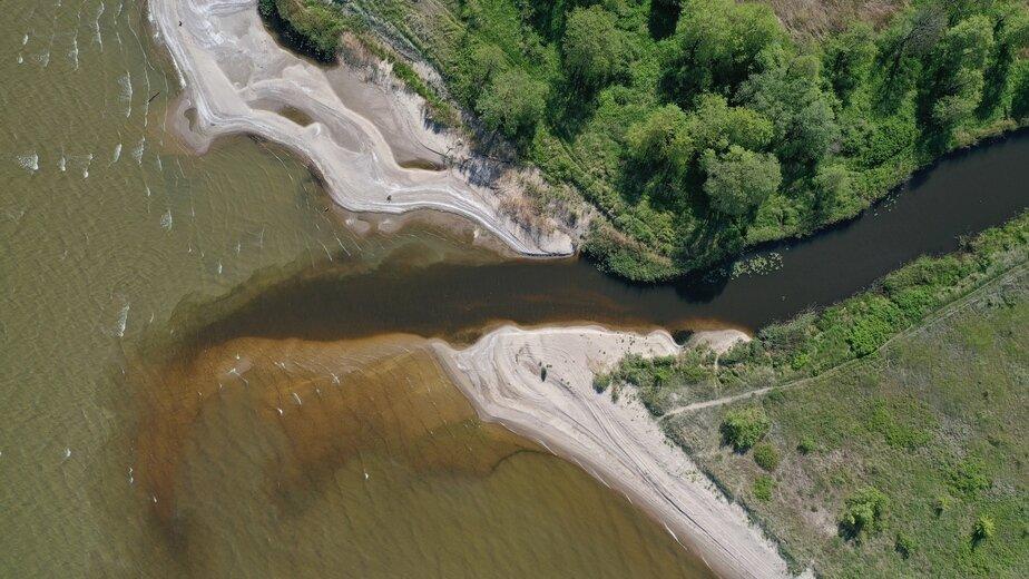 Устье реки Мамоновки, Калининградский залив, Мамоновский городской округ