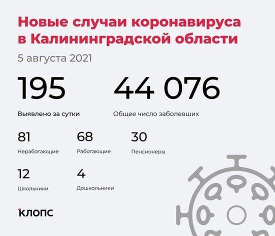 У 144 — ОРВИ, 49 болеют бессимптомно: подробности о ситуации с ковидом в Калининградской области - Новости Калининграда