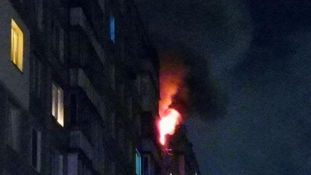 «Побежал через огонь спасти кота»: в Калининграде в девятиэтажке произошёл пожар (фото)
