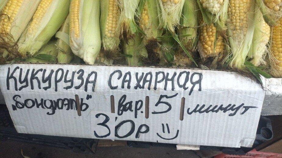 Щупай зёрнышки, смотри на ботву: как выбрать кукурузу в Калининграде - Новости Калининграда | Фото: «Клопс»