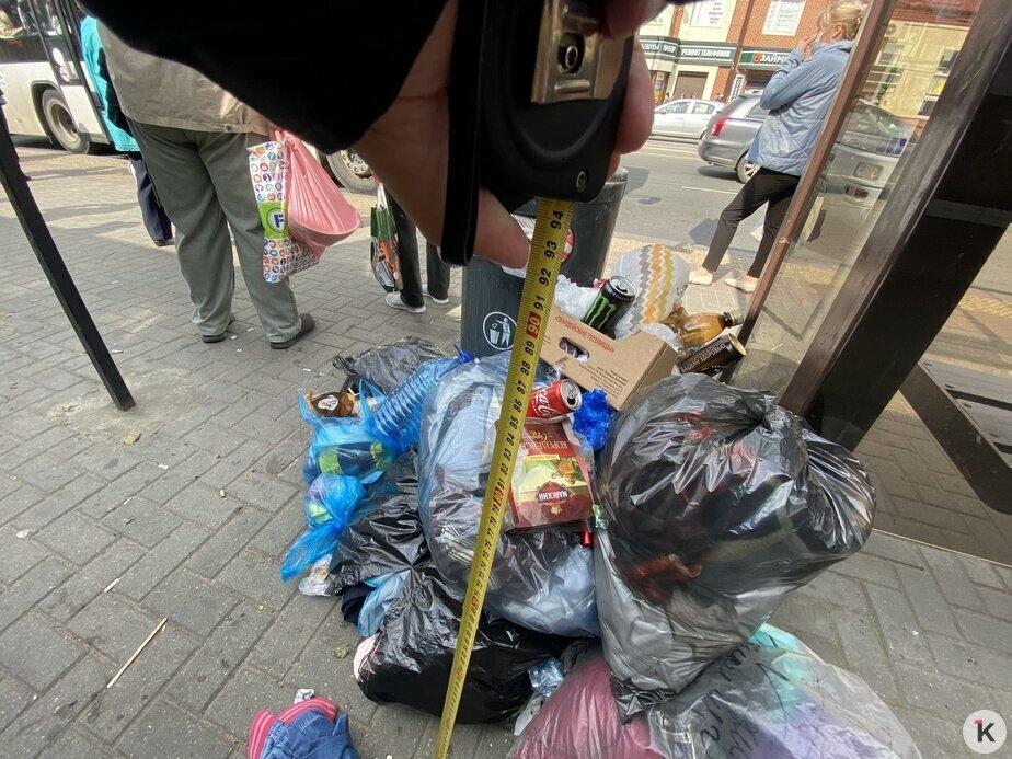 В центре Калининграда остановки завалены мусором (фото)  - Новости Калининграда   Фото: Александр Подгорчук / «Клопс»