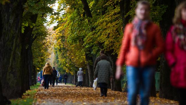 Чем заняться в выходные: 15 интересных вариантов для отдыха в Калининграде и за городом
