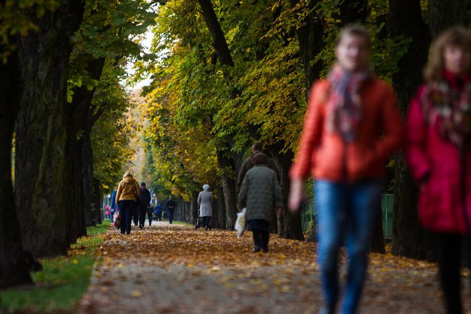 Чем заняться в выходные: 15 интересных вариантов для отдыха в Калининграде и за городом - Новости Калининграда   Фото: архив «Клопс»