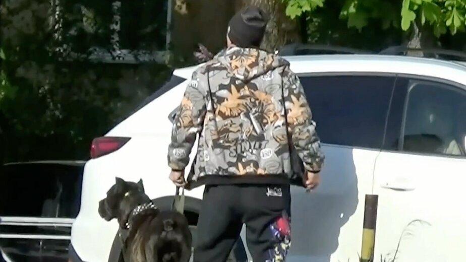 «Мик Джаггер» брал для прикрытия собаку   Фото: скриншот с видеозаписи, сделанной оперативниками