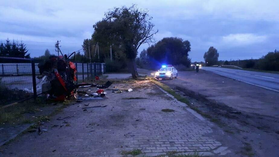 Четверо пострадали, один погиб: под Светлым Mazda врезалась в дерево и вылетела в забор (видео с места аварии) - Новости Калининграда | Фото: пресс-служба регионального УМВД