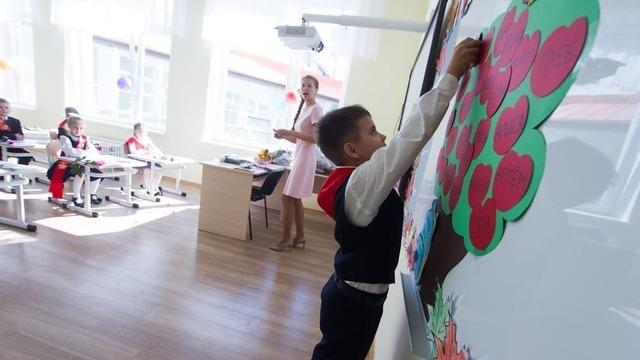 Биолог-эволюционист поделился 8 советами, как детям лучше усваивать материал и хорошо учиться