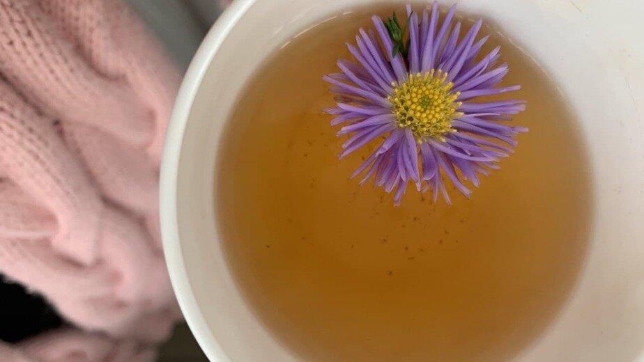 Японский учёный указал на целебные свойства зелёного чая - Новости Калининграда | Фото: архив «Клопс»