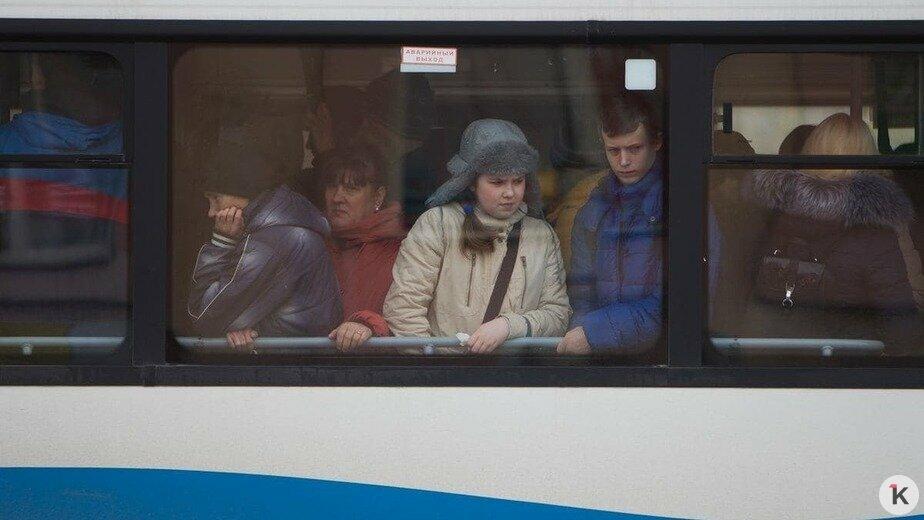 В Калининграде предложили сделать бесплатным проезд для многодетных - Новости Калининграда   Фото: Александр Подгорчук / Архив «Клопс»