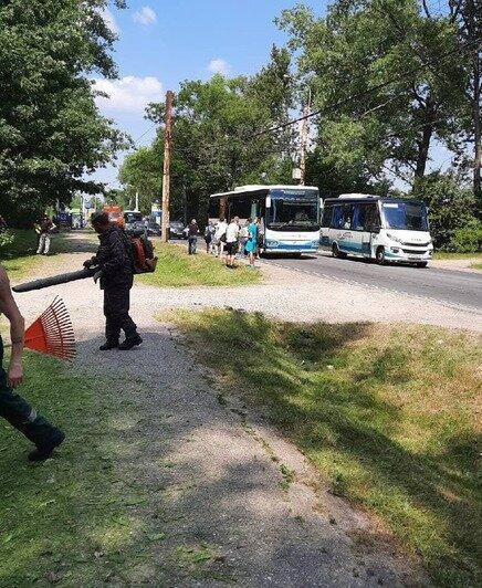 В Калининграде вылетевший из-под газонокосилки камень разбил стекло проезжавшего мимо автобуса (фото) - Новости Калининграда