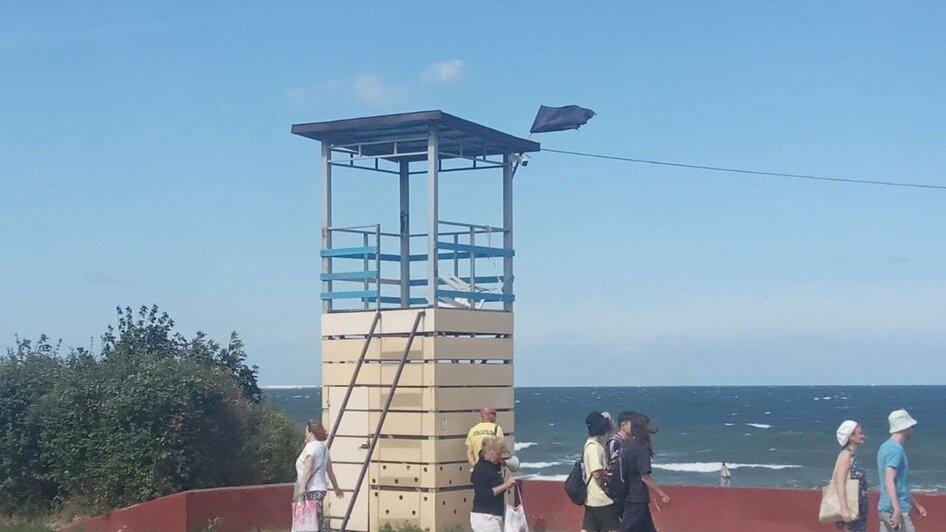 В Зеленоградске люди купаются несмотря на вывешенный чёрный флаг (фото) - Новости Калининграда | Фото: очевидец