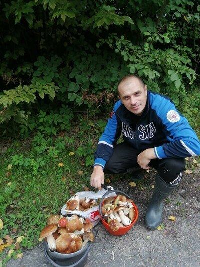 После дождей пошли грибы: калининградцы хвастаются добычей - Новости Калининграда | Фото: Андрей Корниенко