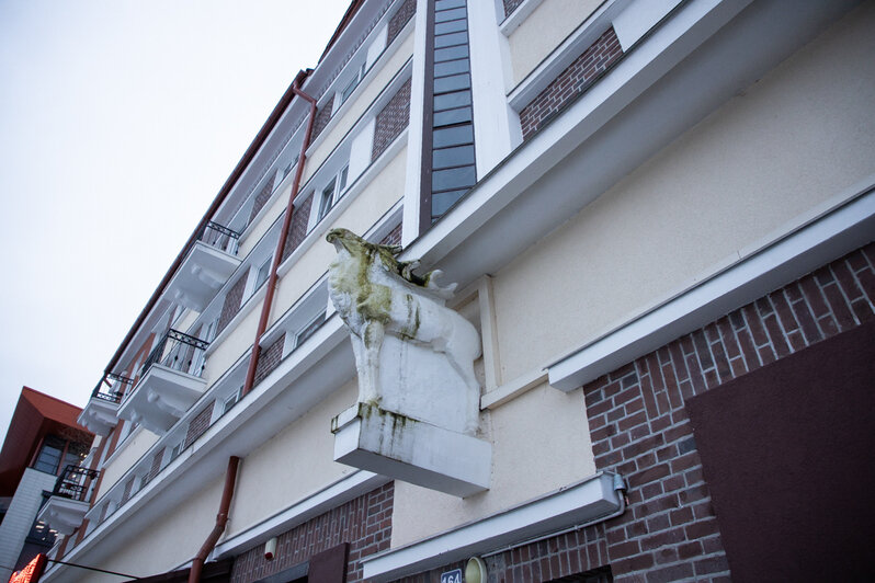 14 улиц в Калининграде, где можно увидеть старинные барельефы и хаусмарки (фото)     - Новости Калининграда